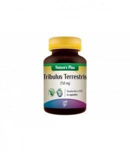 Nature's Plus - Tribulus Terrestris - 60 comprimés de 250mg