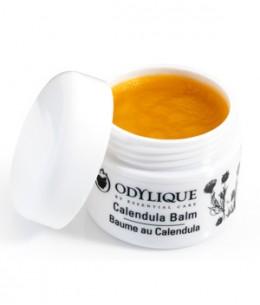 Odylique - Baume Calendula - 20 gr