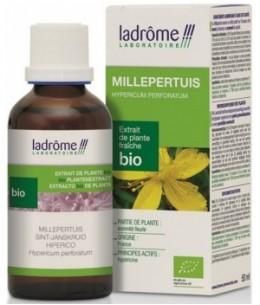 Ladrome - Extrait de plante fraîche Millepertuis bio - 50 ml