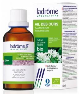 Ladrome - Extrait de plantes fraîches Ail des Ours bio - 50 ml