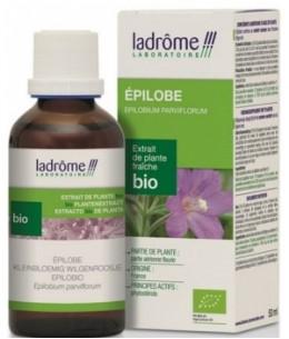 Ladrome - Extrait de Plantes Fraîches Epilobe bio - 50 ml