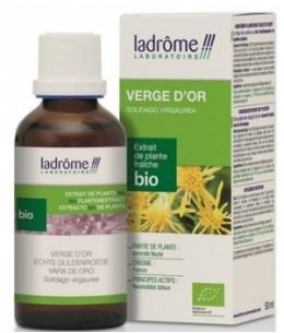 Ladrome - Extrait de plantes fraîches Verge d'or bio - 50 ml