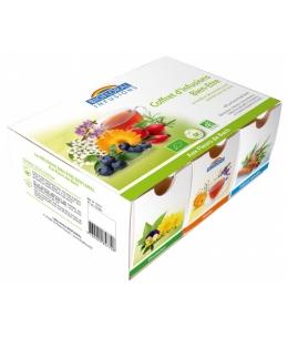 Biofloral - Coffret d'infusion Bien-être - 40 sachets + 1 Tasse offerte