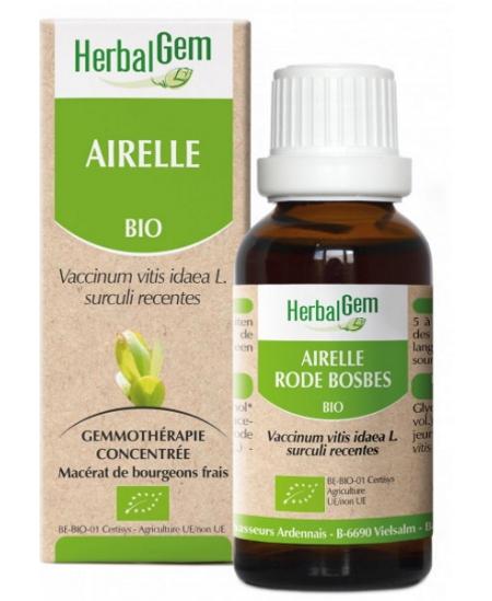 Herbalgem Gemmobase - Airelle bio Flacon compte gouttes - 50 ml