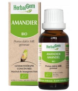 Herbalgem Gemmobase - Amandier bio Flacon compte gouttes - 50 ml