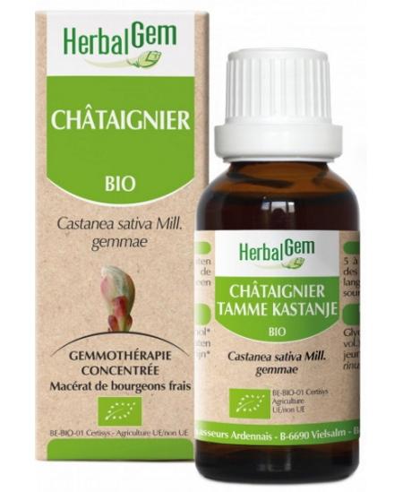 Herbalgem Gemmobase - Châtaignier bio Flacon compte gouttes - 50 ml