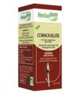 Herbalgem Gemmobase - Cornouiller bio Flacon compte gouttes - 50 ml