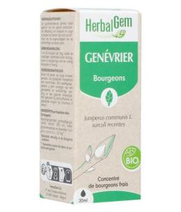 Herbalgem Gemmobase - Genévrier bio Flacon compte gouttes - 50 ml