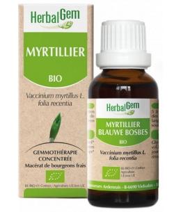Herbalgem Gemmobase - Myrtillier bio Flacon compte gouttes - 50 ml