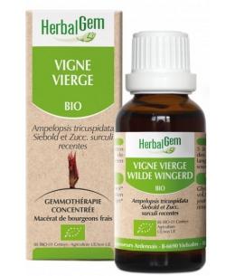 Herbalgem Gemmobase - Vigne vierge bio Flacon compte gouttes - 50 ml