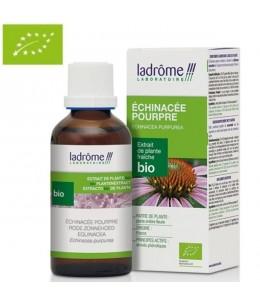 Ladrome - Echinacée Pourpre Extrait de Plante Fraîche Bio - 100 ml