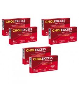 Bio Santé Sénior - Cholexcess Levure de riz rouge 3 lots de 2 boîtes cure de 6 mois