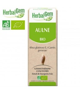 Herbalgem Gemmobase - Aulne Bio Flacon compte gouttes - 50 ml