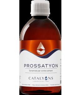 Catalyons - Prossatyon - 500 Ml