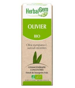 Olivier bio Flacon compte gouttes - 50 ml - Herbalgem  mémoire circulation Espritphyto