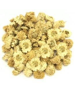 Camomille Romaine capitule floral trié entier 100gr Herboristerie De Paris aliment pour préparation de tisanes