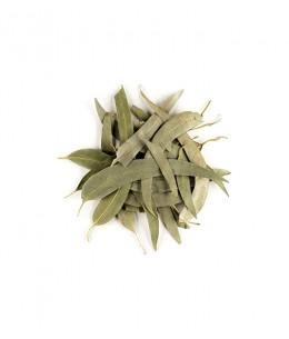 Herboristerie de Paris - Eucalyptus feuilles longues entières bio - 100g eucalyptus globulus tisane Espritphyto