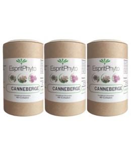 EspritPhyto - Cranberry - Cure de 2 mois (3 boîtes de 90 gélules)