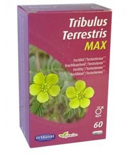 Orthonat Nutrition - Tribulus terrestris 650 Bien être masculin 60 gélules