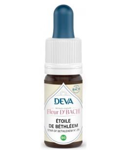 Elixir Floral Bach Etoile de Béthléem bio 10ml - Deva courage et réconfort Espritphyto