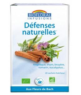 Biofloral - Infusion Défenses naturelles - 20 sachets Défense Resistance Revitalisant Hiver Espritphyto