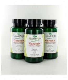 EspritPhyto - Garcinia Cambogia - Cure de 3 Mois (3 Boîtes de 90 Gélules)