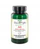 EspritPhyto - Ail - 120 Gélules
