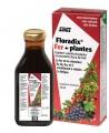 Salus - Floradix fer + plantes - flacon 250 ml