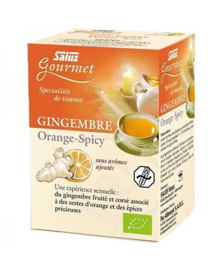 Salus - Tisane Gourmet Gingembre, Orange spicy Bio - 15 sachets