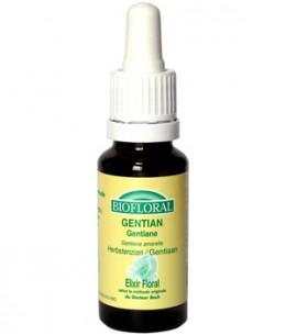 Biofloral - Elixir Gentian n° 12 Gentiane - 20 ml