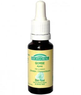 Biofloral - Elixir Gorse n° 13 Ajonc - 20 ml