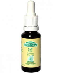 Biofloral - Elixir Elm n° 11 Orme - 20 ml