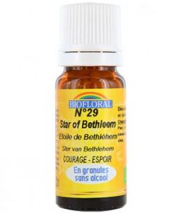 Biofloral - Elixir Star of Bethléem n°29 Etoile de Bethléem en granules - 10 gr