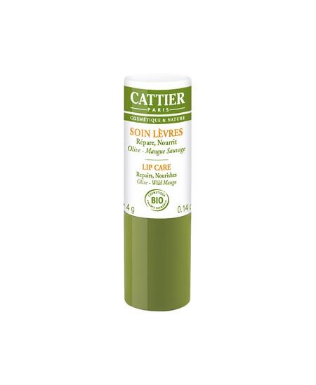 Cattier - Baume à lèvres réparateur et ultra nourrissant Olive Mangue - 4 gr