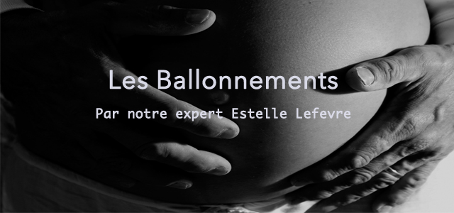 sur tous les fronts contre les ballonnements le blog d 39 espritphyto. Black Bedroom Furniture Sets. Home Design Ideas
