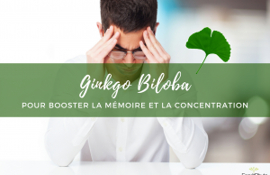 Ginkgo Biloba mémoire