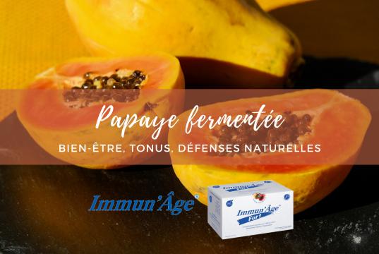 Papaye fermentee Immunage