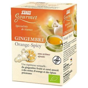 Salus_tisane_gourmet_gingembre_orange_spicy_bio