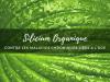 Silicium_organique