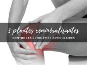 5 plantes contre les problemes articulaires
