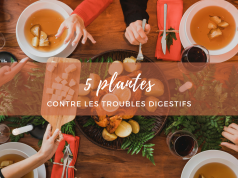 5 plantes contre les troubles digestifs