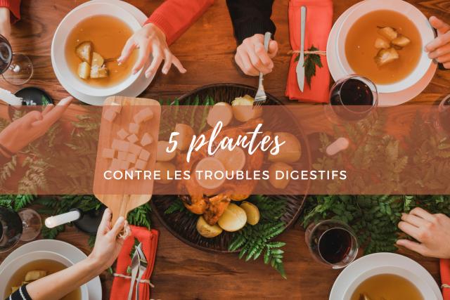 5 plantes contre les troubles digestifs