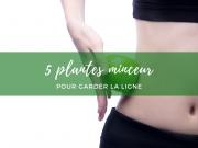 5 plantes minceur