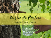 seve_bouleau_detox