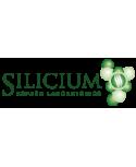 Silicium España Laboratorios