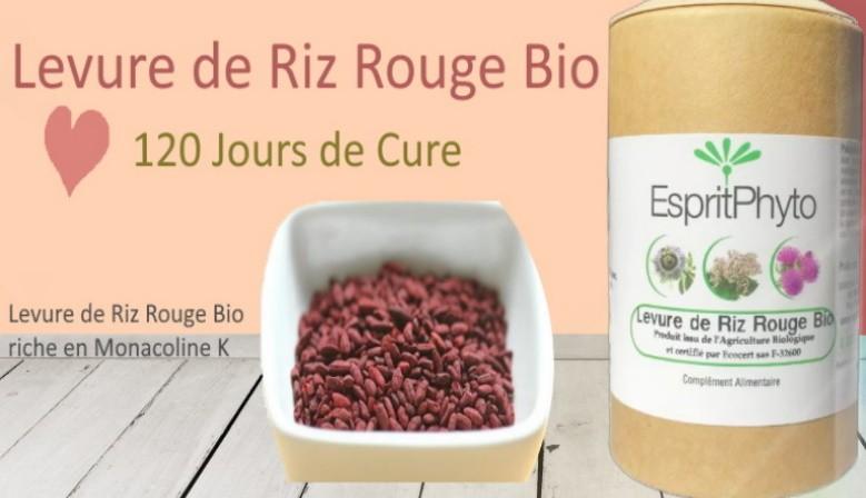 levure de riz rouge 4 mois de cure